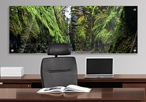 Oneonta Gorge - Office Art on Acrylic