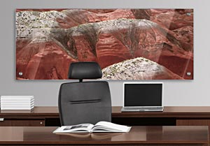 The Petrified Forest - Office Art on Acrylic